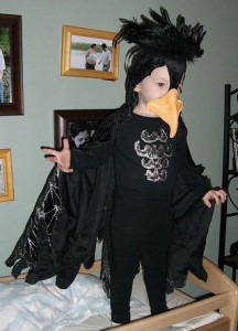 Raven Costume for Kids