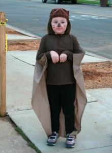 Squirrel Costume Child