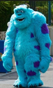 Sully Costume Adult